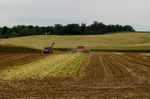 Carroll County Farm Real Estate