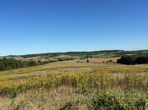 Farmland for sale Illinois