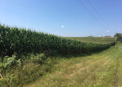 Ludwig Farm Ogle County