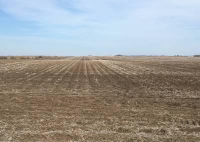 DeKalb County Land – Wagner Farms LP
