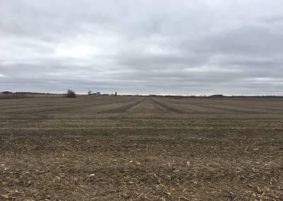 Dekalb County Farmland